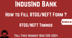 indusind bank rtgs neft pdf form download